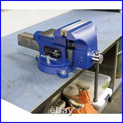 Eastwood 6 W Jaws Industrial Solid Iron Heavy Duty Bench Vise with Anvil Body